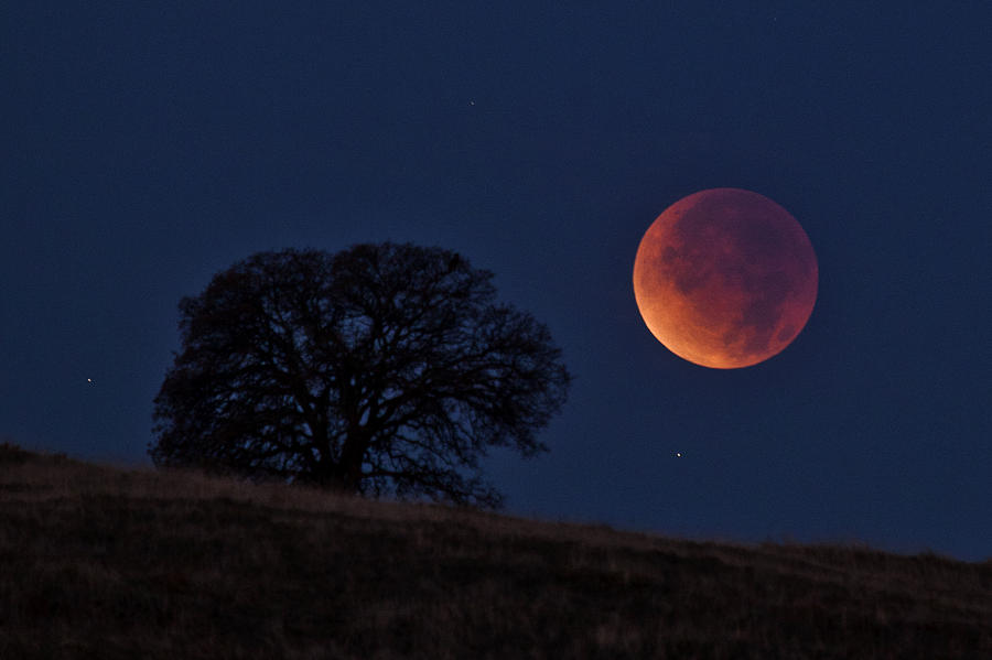 Full Moon and Libra Lunar Eclipse – April 15, 2014